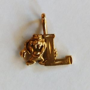 14 kt Gold WB95 charm